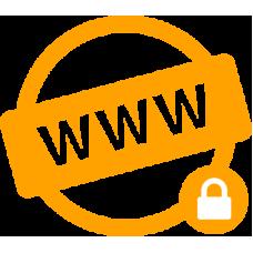 حماية و خصوصية الدومين للشركات